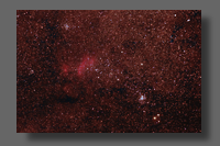 Northern Jewel Box in Scorpius